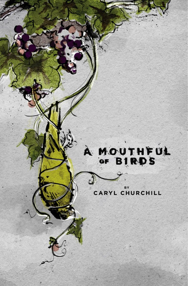 A Mouthful of Birds cover photo